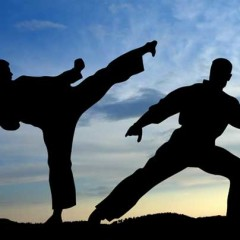 Why You Should Add Martial Arts Into Your Life